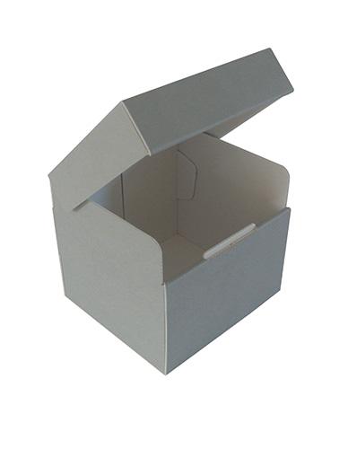 Negatives box Pbox-C